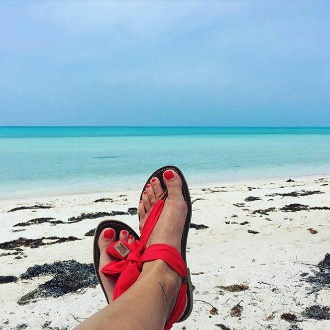 Solène, Bermudes